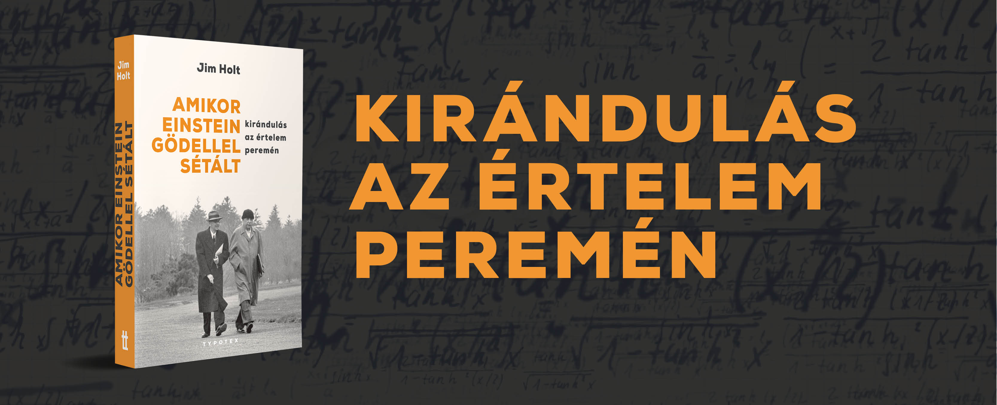 Einstein-Gödel